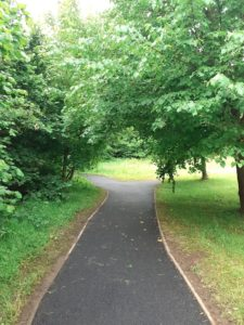 Pathways at Parc Tir Iarll